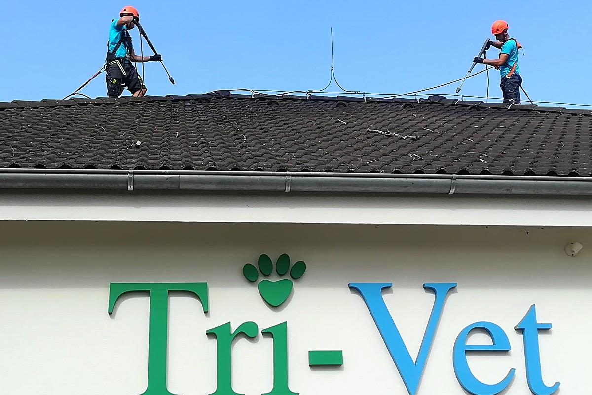 Maľovanie strechy Tri-vet